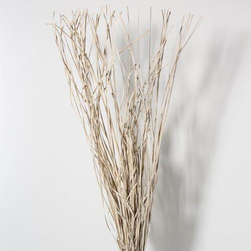 flores-secas-bambusa-h115-cm